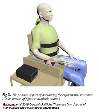 ultrasound cervical multifidus2 test posture